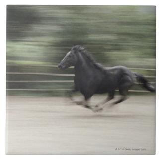 Italy, Latium, Maremma horse galloping (blurred Ceramic Tile