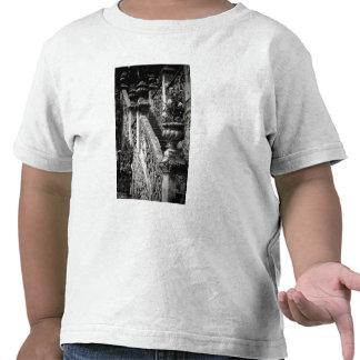 Italy, Lecco Province, Varenna. Villa Monastero, 3 T-shirt