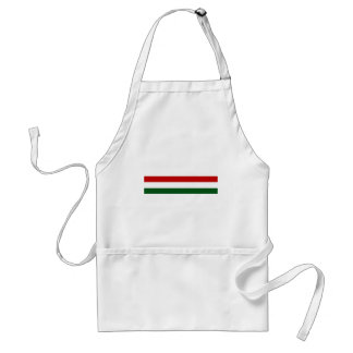 Italy or Mexico banner / flag Adult Apron