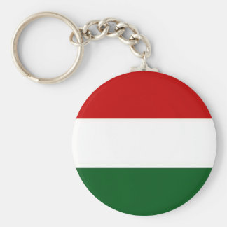 Italy or Mexico banner / flag Basic Round Button Keychain