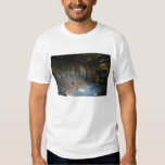 Italy, Parma, Teatro Farnese T-Shirt
