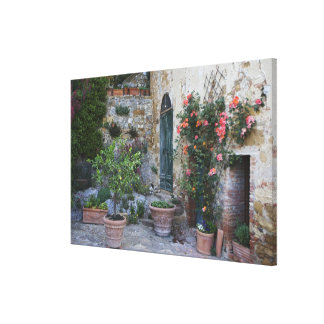 Italy, Petroio. Potted plants decorate a patio Canvas Print