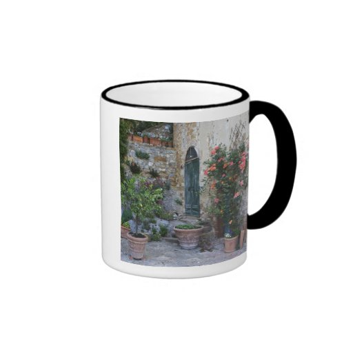 Italy, Petroio. Potted plants decorate a patio Coffee Mugs