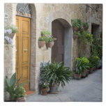 Italy, Pienza. Flower pots and potted plants Tile