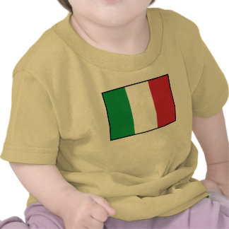 Italy Plain Flag T Shirts