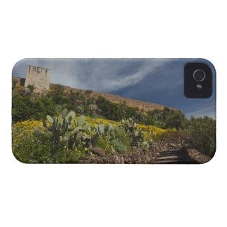 Italy, Sardinia, Bosa. Cacti and Castello iPhone 4 Cover