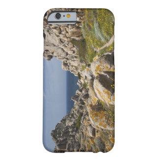 Italy, Sardinia, Santa Teresa Gallura. Capo 2 Barely There iPhone 6 Case