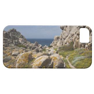 Italy Sardinia Santa Teresa Gallura Capo 2 iPhone 5 Cover