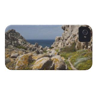 Italy, Sardinia, Santa Teresa Gallura. Capo 2 Case-Mate iPhone 4 Case