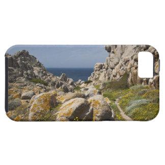 Italy, Sardinia, Santa Teresa Gallura. Capo 2 iPhone SE/5/5s Case