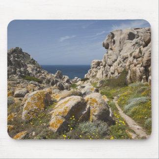 Italy, Sardinia, Santa Teresa Gallura. Capo 2 Mouse Pad