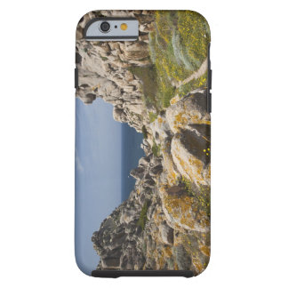 Italy, Sardinia, Santa Teresa Gallura. Capo 2 Tough iPhone 6 Case