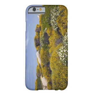 Italy Sardinia Santa Teresa Gallura Capo 3 iPhone 6 Case
