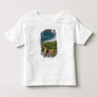 Italy, Sardinia, Tharros. View from the Spanish Toddler T-shirt