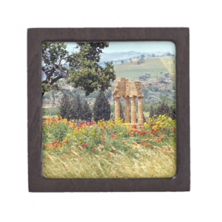 Italy, Sicily, Agrigento. The ruins of the Gift Box