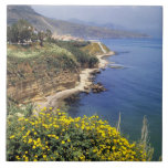 Italy, Sicily. The north coast of Sicily in Tile