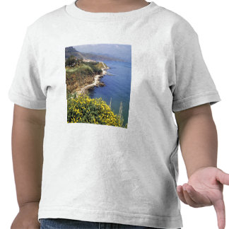 Italy, Sicily. The north coast of Sicily in T Shirts