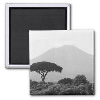 Italy Souvenir from Mount Vesuvius Volcano 2 Inch Square Magnet
