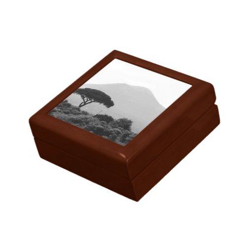 Italy Souvenir from Mount Vesuvius Volcano Keepsake Box
