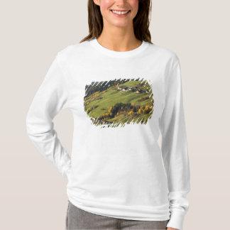 Italy, Trentino - Alto Adige, Bolzano province, 2 T-Shirt