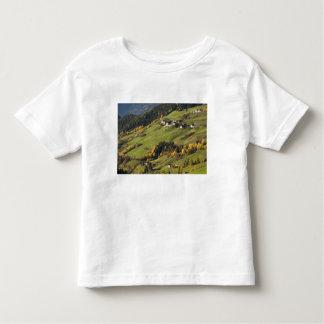 Italy, Trentino - Alto Adige, Bolzano province, 2 Toddler T-shirt