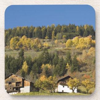 Italy, Trentino - Alto Adige, Bolzano province, 4 Drink Coasters