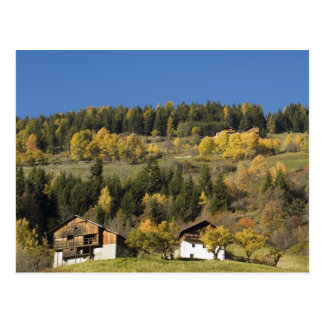 Italy Trentino - Alto Adige Bolzano province 4 Post Card