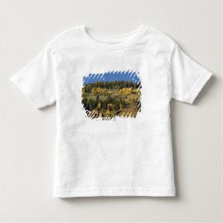 Italy, Trentino - Alto Adige, Bolzano province, 4 Toddler T-shirt