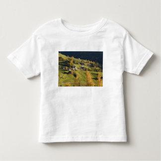 Italy, Trentino - Alto Adige, Bolzano province, 5 Toddler T-shirt
