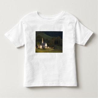 Italy, Trentino - Alto Adige, Bolzano province, Toddler T-shirt