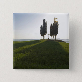 Italy, Tuscany, Cypress Trees in Tuscany with Button