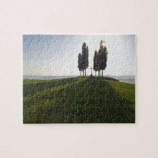 Italy, Tuscany, Cypress Trees in Tuscany with Jigsaw Puzzle