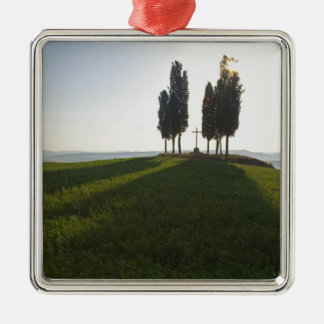 Italy, Tuscany, Cypress Trees in Tuscany with Metal Ornament