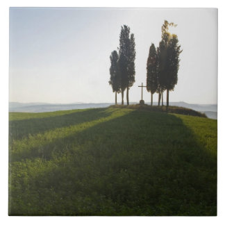 Italy, Tuscany, Cypress Trees in Tuscany with Tile