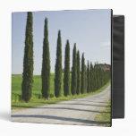 Italy, Tuscany. Cypress trees line driveway to Vinyl Binder