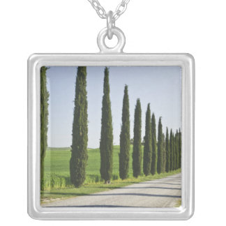 Italy, Tuscany. Cypress trees line driveway to Silver Plated Necklace