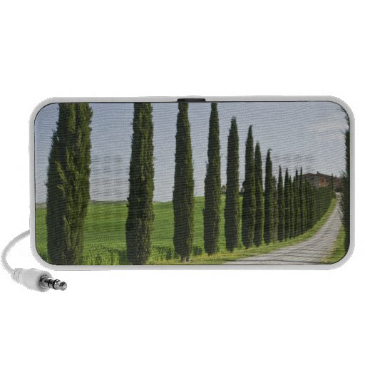 Italy, Tuscany. Cypress trees line driveway to Portable Speaker