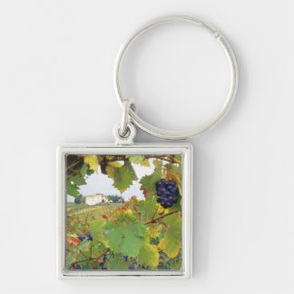 Italy, Tuscany Farmhouse viewed through Silver-Colored Square Keychain