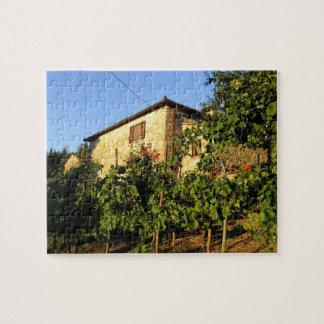 Italy, Tuscany, Greve. Late summer wine scenes Jigsaw Puzzle
