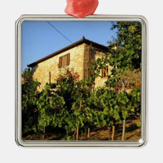 Italy, Tuscany, Greve. Late summer wine scenes Metal Ornament