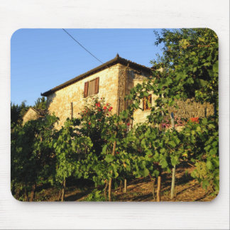 Italy, Tuscany, Greve. Late summer wine scenes Mouse Pad