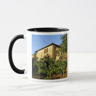 Italy, Tuscany, Greve. Late summer wine scenes Mug