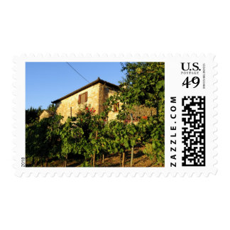 Italy, Tuscany, Greve. Late summer wine scenes Stamp