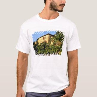 Italy, Tuscany, Greve. Late summer wine scenes T-Shirt