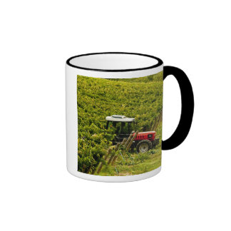 Italy, Tuscany, Greve. Pickers at work during Ringer Coffee Mug