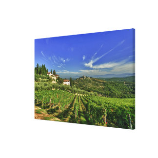 Italy, Tuscany, Greve. The vineyards of Castello Canvas Print