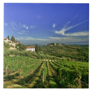 Italy, Tuscany, Greve. The vineyards of Castello Ceramic Tile