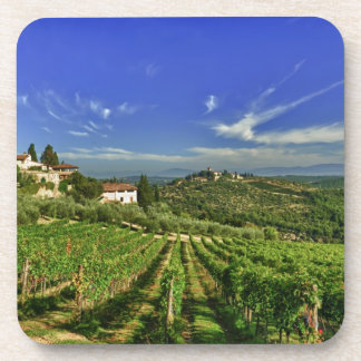 Italy, Tuscany, Greve. The vineyards of Castello Coaster