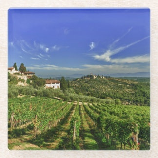 Italy, Tuscany, Greve. The vineyards of Castello Glass Coaster