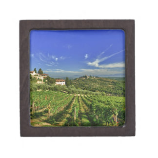Italy, Tuscany, Greve. The vineyards of Castello Jewelry Box